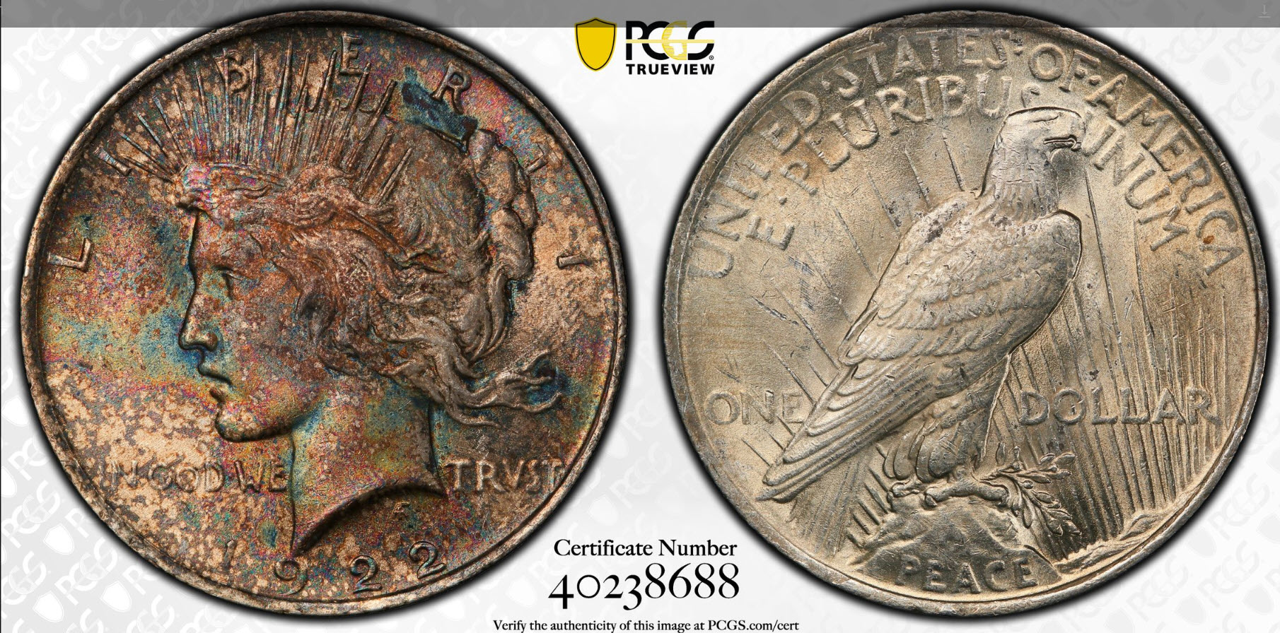 1922 Peace Dollar PCGS with Trueview